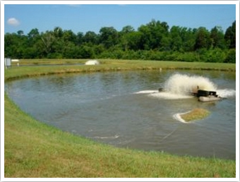 An aerated wastewater lagoon where an island of sludge has been produced by the violent action of the nearby aerator.